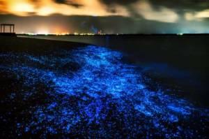 Web-Maldives-At-Night